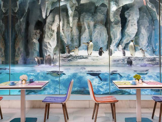 珠海長隆企鵝酒店帝企鵝餐廳自助午餐